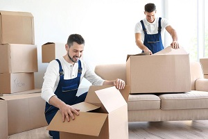 are you looking for a long distance mover?