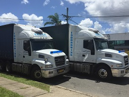 2 of 9 DLM Removals trucks - Interstate Removal Specialists